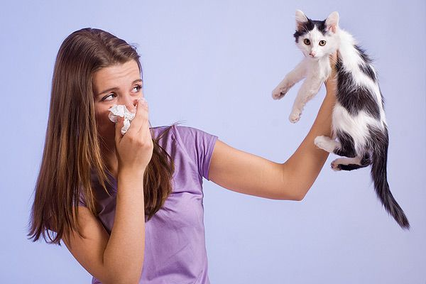 A girl holding up a tissue and a cat.