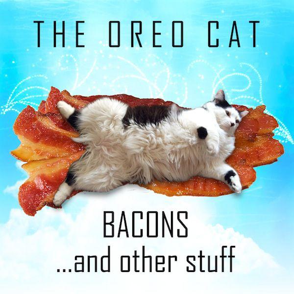 Oreo Book Cover