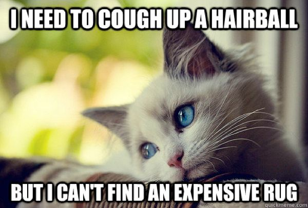 600px-first-world-probs-hairball