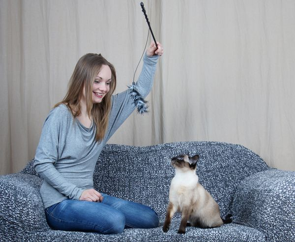 600px-woman-playing-with-cat.jpg