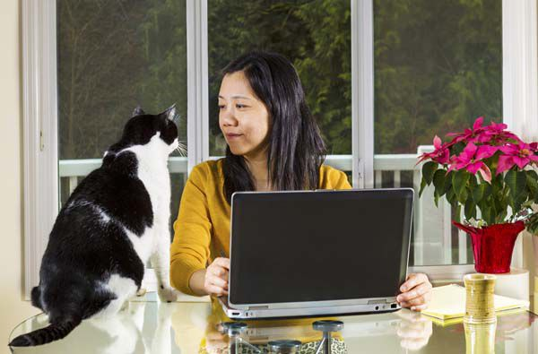 A woman at her computer with a black and white cat.