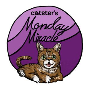 Catster-Monday-Miracle-badge_37_0