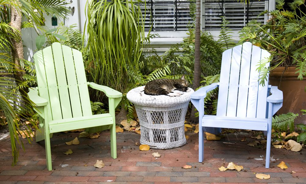 A cat asleep in a garden next to some Adirondack chairs.