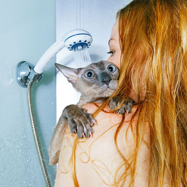 A cat in a shower with his human.