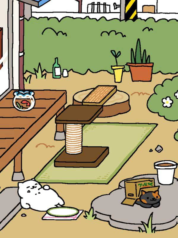 Look at that white cat pigging out on the food I left for him.