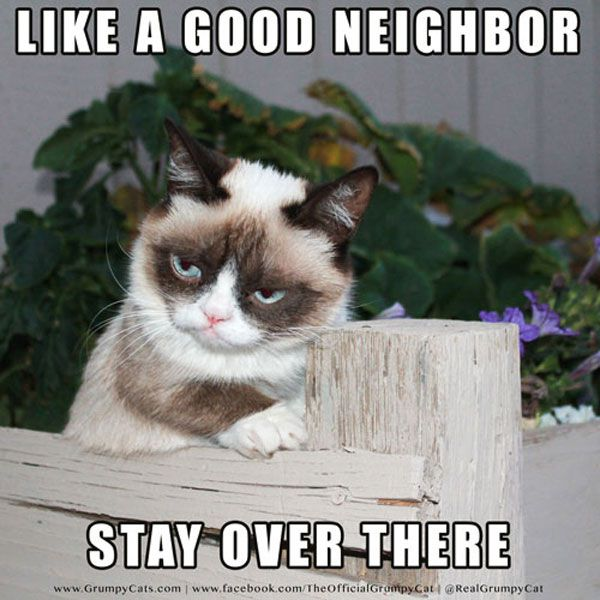 like a good neighbor stay over there meme posted by realgrumpycat
