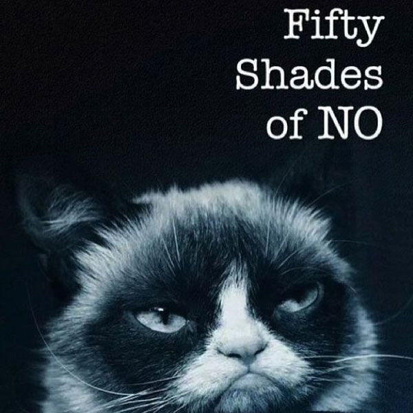 50 shades of no meme posted by anitakaufmann