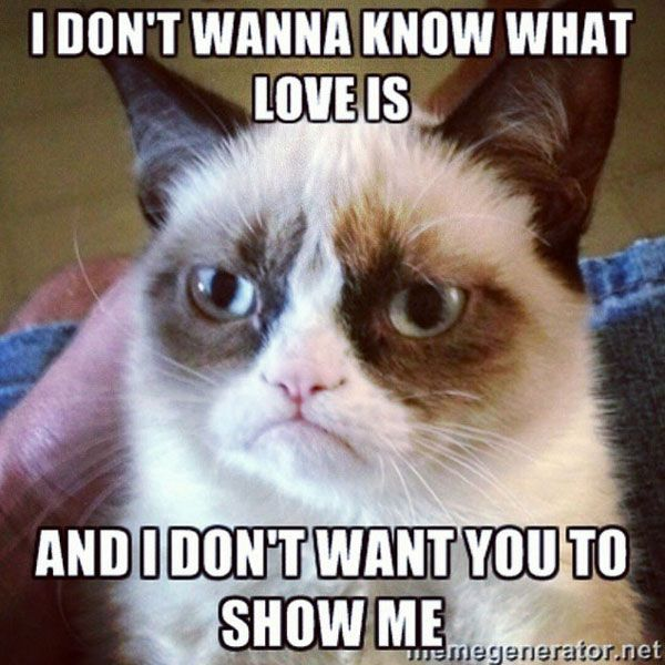 don't wanna know what love is meme posted by memegenerator