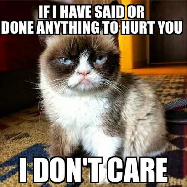 hurt you i don't care meme posted by rush_rox