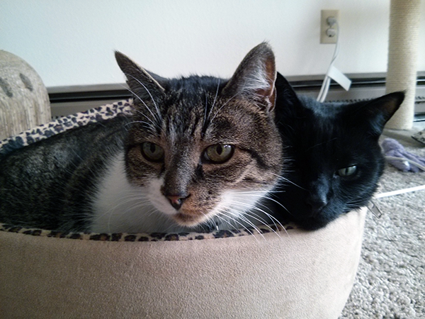 Thomas with his snuggle buddy, Belladonna.