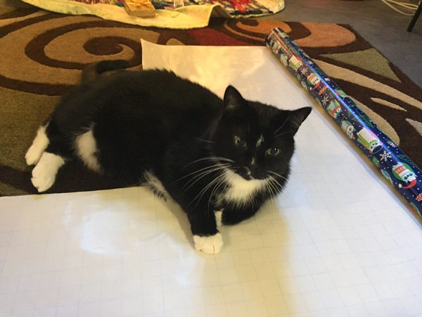 A cat lying on top of wrapping paper.