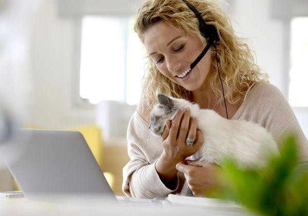 Woman reinforcing meowing with attention. Photo by Shutterstock