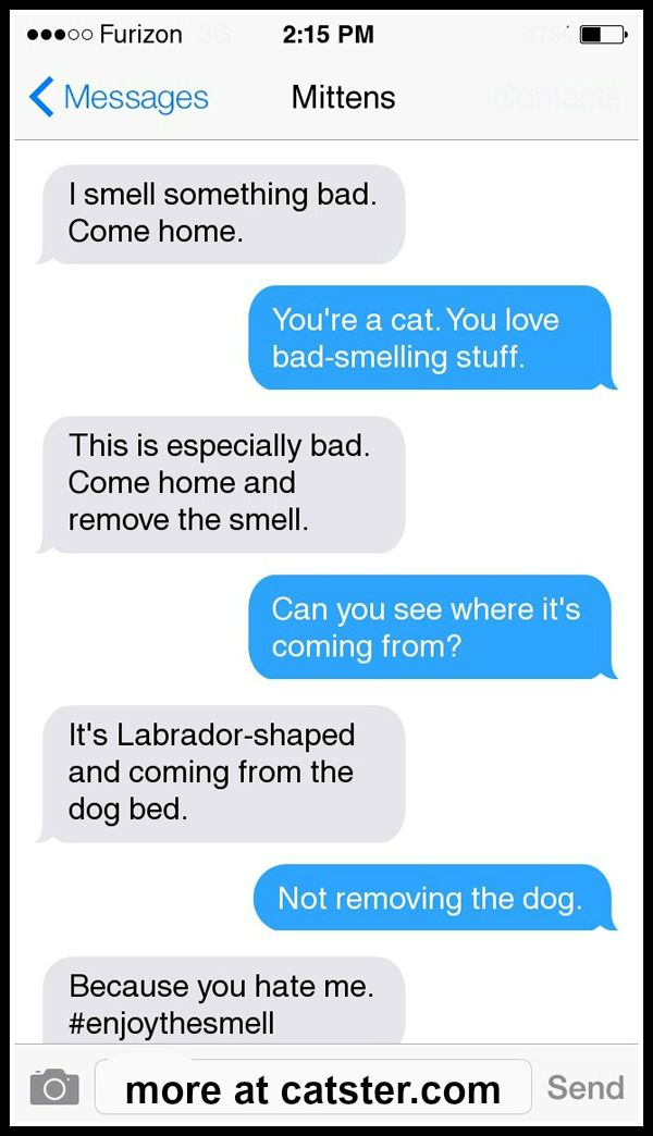 mittens-earl-smell