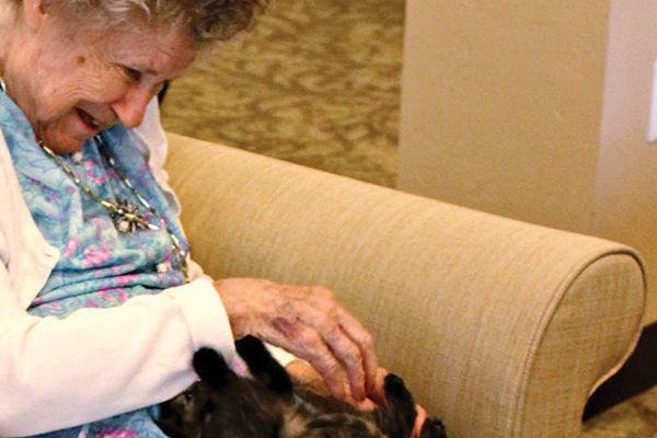 Nursing home with cats.