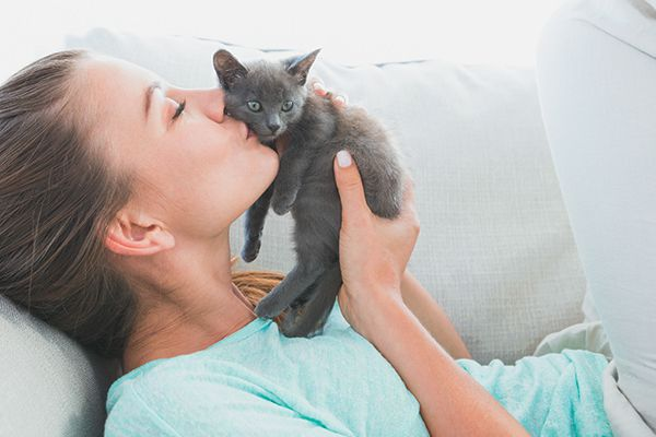 A woman kissing a gray kitten on a couch.