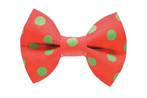 Adorable bow ties and collars at sweetpicklesdesigns.com.