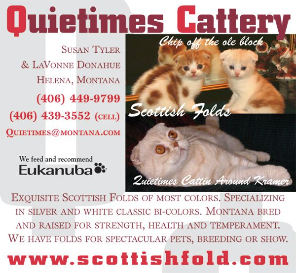 Quiettimes Cattery.