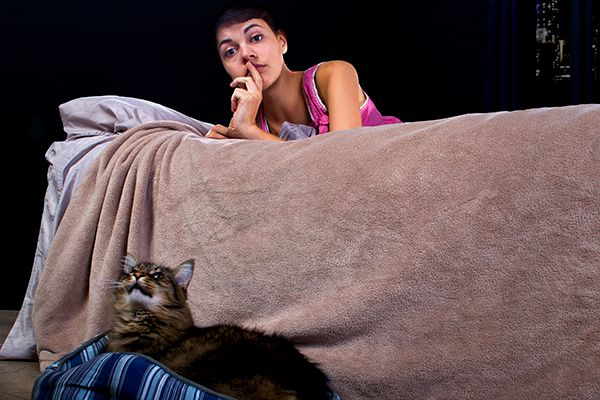 Is Your Cat Meowing At Night Reasons Why And What To Do