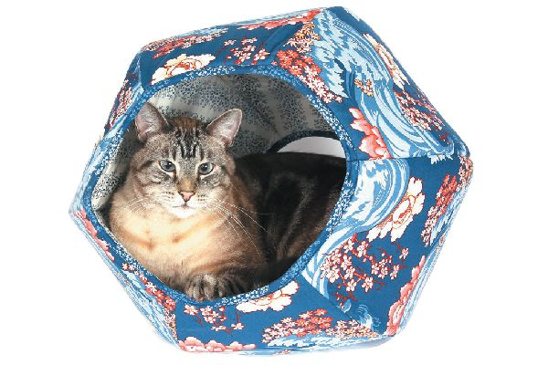 Cat in a colorful cat bed.