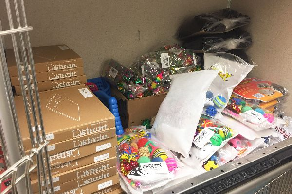 All foster caretakers receive a supply of toys, food, litter and other necessities.