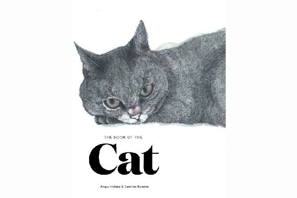 The Book of the Cat.