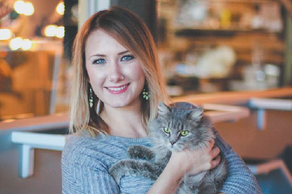 Hadyn Hilton Java Cats.