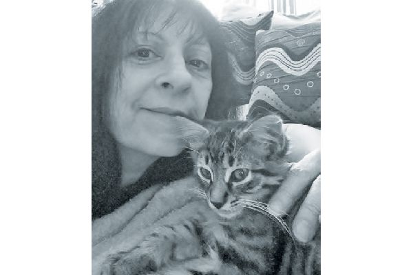 Pam and her cute quartet will receive a six-month supply of cat litter and one bag of cleanprotein kibble.