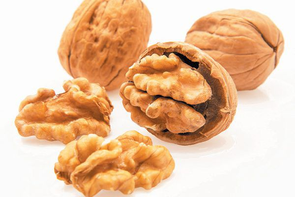Walnut shells as natural cat litter does a great job at controlling odor. Photography ©serdar_yorulmaz   Getty Images.