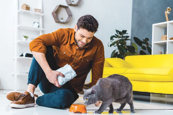 A cat getting fed by a man.