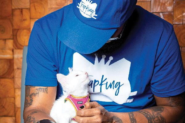 Trapking with a cat looking up.
