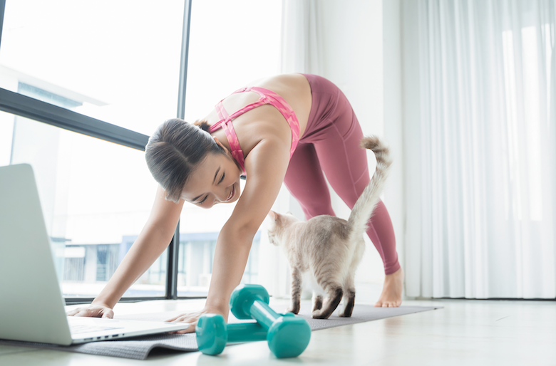 excerise with your cat